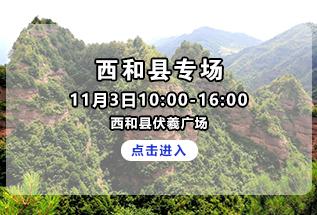 2020年甘肃省助力脱贫攻坚精准招聘服务活动西和县专场