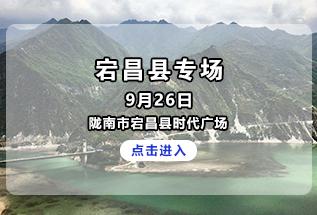 2020年甘肃省助力脱贫攻坚精准招聘服务活动宕昌县专场
